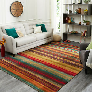 5x8-Mudroom-Rug-Decorative-Indoor-Outdoor-Balcony-Sunroom-Patio-Southwest-Style