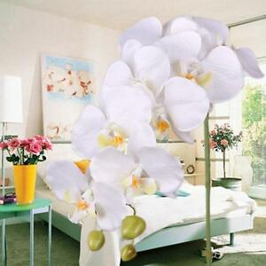 Small-Silk-Flower-Artificial-PU-Moth-Butterfly-Orchid-Home-Decoration-White-H