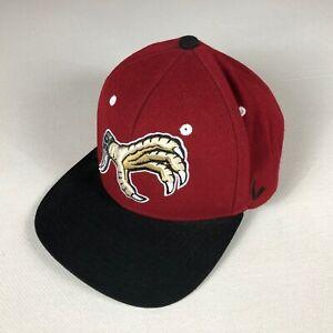 South Carolina Snapback Hat Rare Claw Logo 3D Raised Gamecocks USC Wool Blend