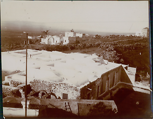 Tunisie-Tunis-Vue-panoramique-Vintage-silver-print-Tirage-argentique-9