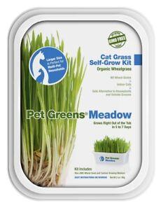 Bellrock-Pet-Greens-Meadow-Self-Grow-Tub-Free-Shipping