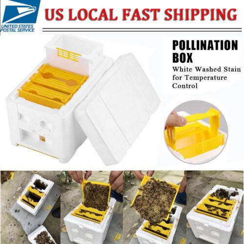Harvest Bee Hive Beekeeping King Box Pollination Box Foam Frames Beekeeping Tool