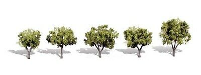 1.25in.-2in. Early Light - Pack Of 5 - Oo/ho Trees Woodland Scenics Tr3546 Sentirsi A Proprio Agio