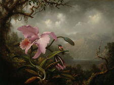 Orchid and Hummingbird Martin Johnson Heade Orchidee Kolibri Vogel B A3 02861