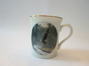 Lenox Eagle Conservation Northern Heritage 1994 Mug Cup Coffee Tea China