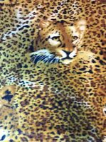 "Fleece fabric yellow leopard cheetah animal safari jungle print, 60"" w sold BTY"