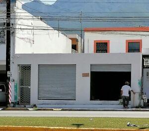 Local Avenida Ruiz Cortinez