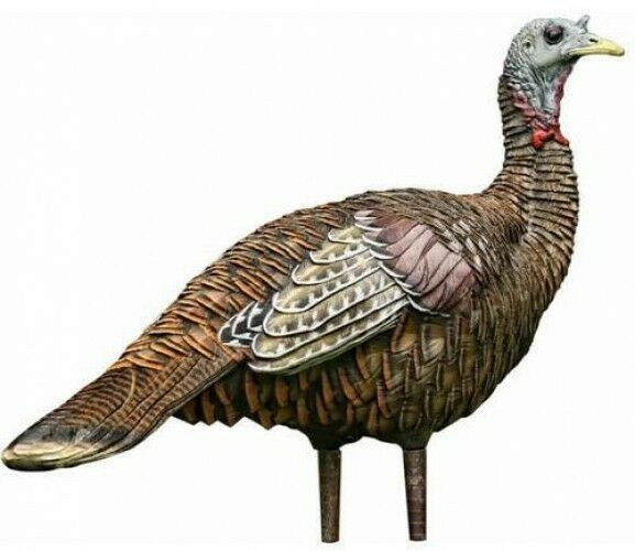 Turkey Hen Decoy Hunting  Trap Tool Realistic Design Dropped Wings Quality Sturdy  considerate service