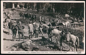 GLACIER-NATIONAL-PARK-MT-Going-To-The-Sun-Camp-Trail-Horses-Vtg-RPPC-Postcard-PC