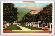 Market Street Parkway in Shamokin, Pennsylvania Linen Postcard Unused