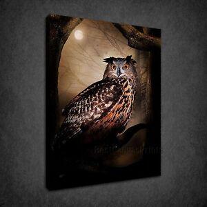 STUNNING OWL MOONLIGHT BIRD BOX CANVAS PRINT WALL ART PICTURE