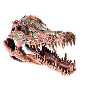 Crocodile skull brown cave aquarium ornament decoration for Fish tank skull decoration