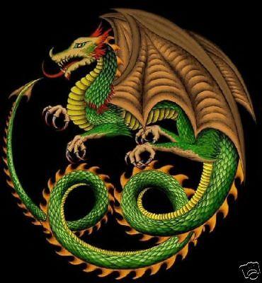 GREEN DRAGON CROSS STITCH CHART BN!