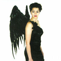 Feathered Black Wings Feather Maleficent Fairy Dragon Adult Halloween Costume