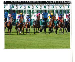The Start Horse Racing Start Line Printed Photo Picture