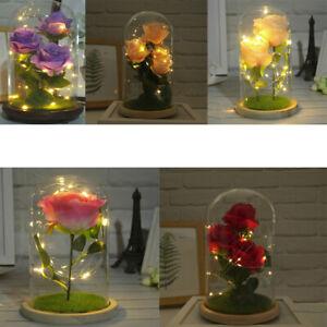 Eternal-Forever-Rose-Flower-In-Glass-LED-Light-Home-Decor-Brithday-Gift-For-Her