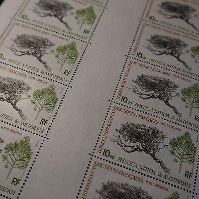 ZuverläSsig Feuille Sheet Taaf Pa Nr.60 X10 Flora Europa Phylica Nitida 1979 Neuf Luxe Mnh Entlastung Von Hitze Und Sonnenstich Briefmarken