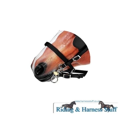 Noseband Zilco Tedex Driving Harness