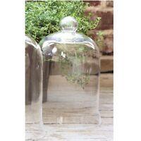 Glass Cloche Bell Jar French Country Garden Terrarium Cake Dome