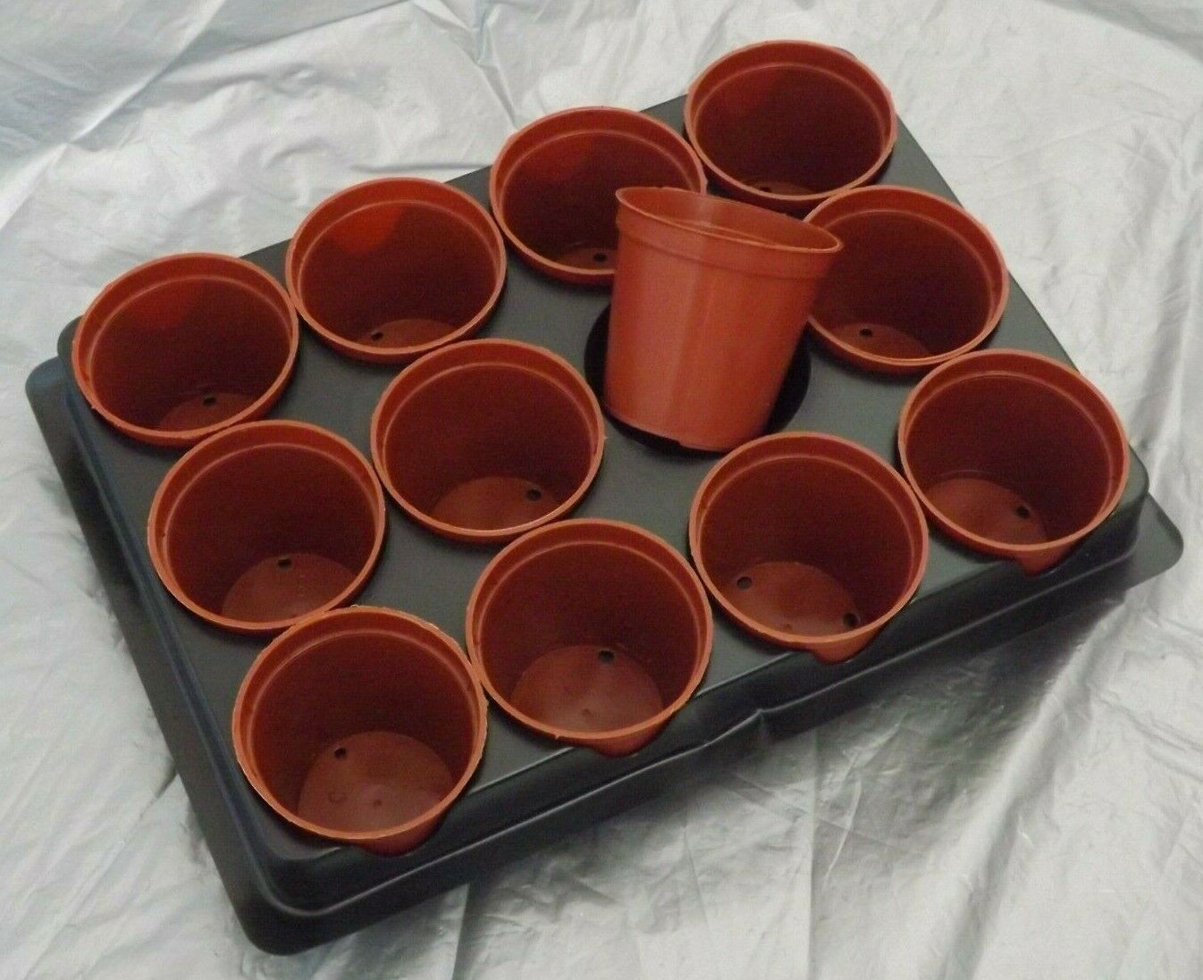 24 (2 x 12) Seedling Pots and Tray Lightweight Reusable Round 6cm Plastic Pots