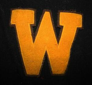 VINTAGE-1960-039-S-1970-039-S-SCHOOL-LETTER-BROWN-AND-GOLD-PATCH-7-034-X-6-1-2-034