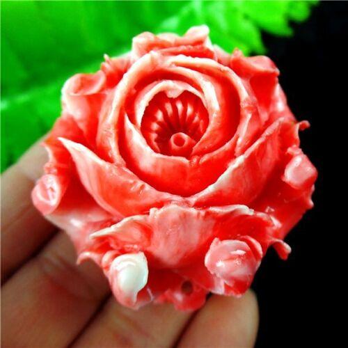 Hermosa Rosa Roja almeja gigante Tallado Flor Colgante Perla 44x42x22mm L /_ zshd 023