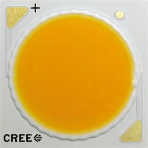 1 x Cree CXA2540-0000-000N0HV250H, CXA Series White CoB LED, 5000K, Round Lens