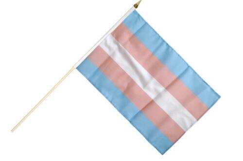 Transgenre Pride Bâton Drapeau Drapeaux Drapeaux Stock drapeau 30x45cm