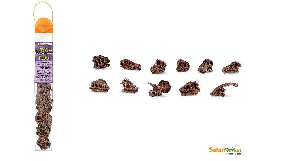 Safari Ltd 687404 Schädel Dinosaurier Schädel 687404 (11 Minifiguren) Serie Tubos-Röhren 929f57