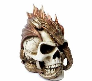 Dragon-Keeper-039-s-Skull-Alchemy-Gothic-Norse-Mythology-Vault-V72