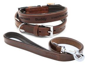 Collier de chien rembourré en cuir Vintage Premium de haute qualité avec le fil assorti