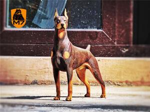 M7 Doberman Kupiert Statue Dobermann Hund Haustier Figur Tier Dekoration Spielzeug Geschenk Ebay