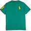 Polo-Ralph-Lauren-Enfants-Garcons-Filles-a-encolure-ras-du-cou-manches-courtes-T-Shirt-top-2-To miniature 7