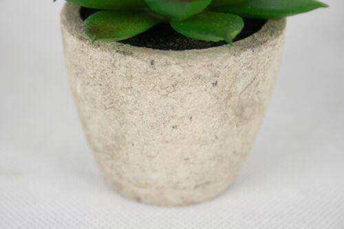 Artificial Mini Cactus in Stone Pot Small Succulents Decor Home /& Office
