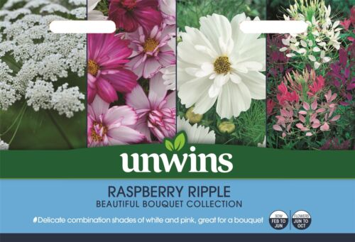 Unwins Pictorial Packet Unwins Raspberry Ripple Collection Pack Seeds