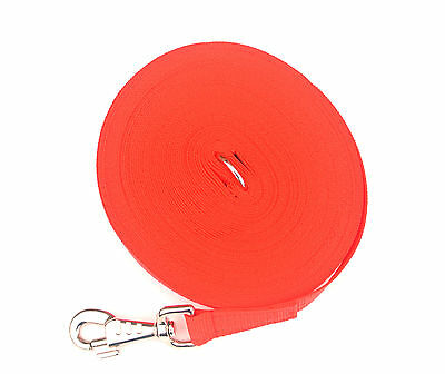 100ft 30m Long Dog Training Lead Obedience Recall leash 25mm Wide Webbing In Red