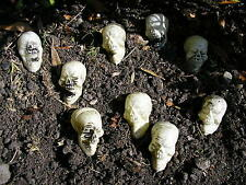 "9 halloween plastic skeleton skulls  2"" x 1.5"""