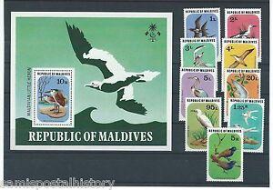 Maldive-Islands-Maldives-colorful-mnh-stamp-set-and-sheet-birds