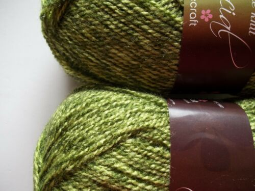 Stylecraft Double Knit Special twist yarn Greengage lot of 2 322 yds each
