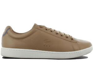 Hommes 318 417 Chaussures Cuir 32cam0022c21 Lacoste 416 Sneakers Carnaby Evo wnHxqag7I