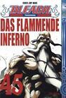 Bleach 45 von Tite Kubo (2011, Taschenbuch)