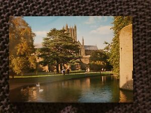 Wells-Cathedral-From-the-Moat-Vintage-Postcard