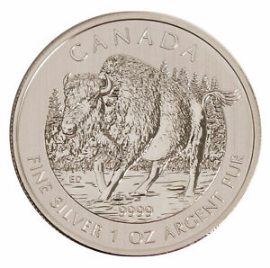 Lot-of-10-2013-5-1oz-Silver-Canadian-Wood-Bison-9999-BU