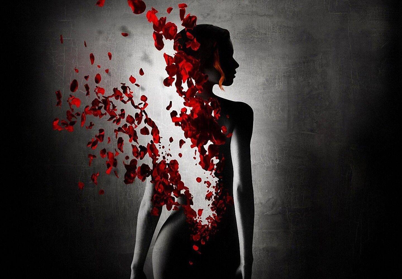 Abstract damen - rot Petals Flowers Silhouette Mädchen Kunst Framed Canvas Bilds
