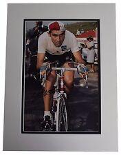 Eddy Merckx SIGNED autograph 16x12 photo display Cycling Sport AFTAL & COA
