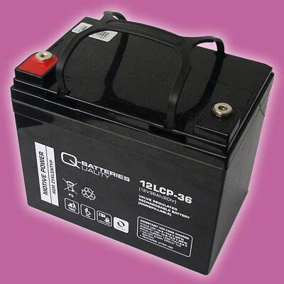 Blei AGM Akku Batterie Motor-Akku 12V 36Ah für Bootsmotor Zebco Rhino Cobold