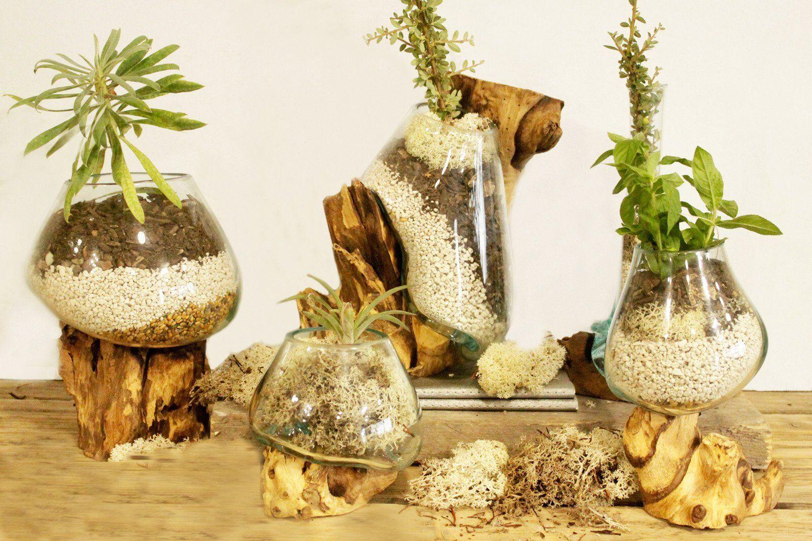 G11 Handmade Melted Molten Glass on Teak Wood Air Plants Holder Cut Flower Fish