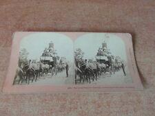 PHOTO STEREOSCOPE STEREOGRAPH 1887 USA GREAT TALLY-HO CARNIVAL CARNAVAL HUNTING