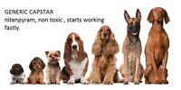 Capstar Nitenpyram Flea Control 25 57mg Capsules For Pets Over 25lbs