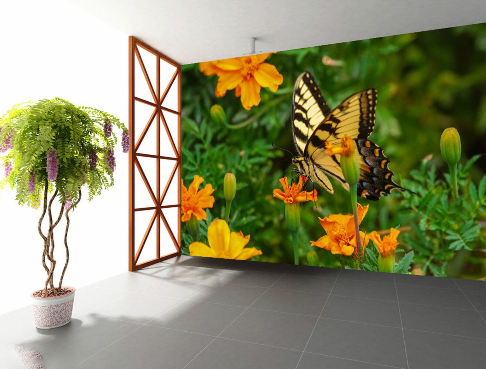 3D Butterfly 4655 Fototapeten Wandbild Fototapete Bild Tapete Familie Kinder DE